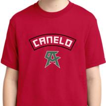 a0ad31554 Canelo Alvarez Team Youth T-shirt   Kidozi.com