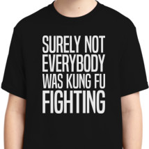48178fe44 Surely Not Everybody Was Kung Fu Fighting Youth T-shirt | Kidozi.com